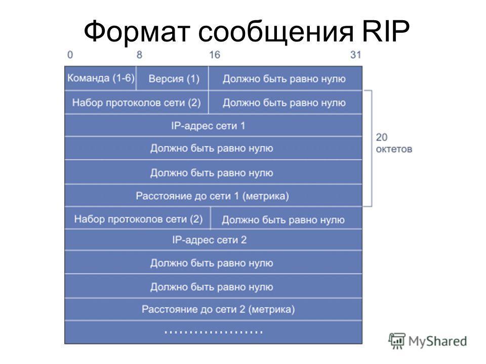 Формат сообщения RIP