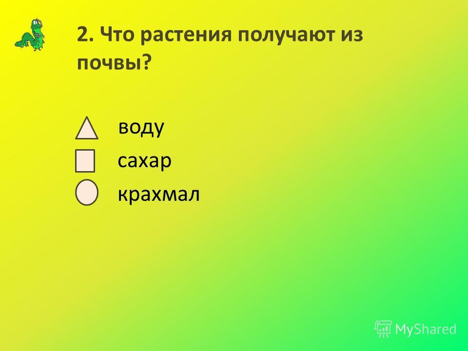 2. Что растения получают из почвы? воду сахар крахмал