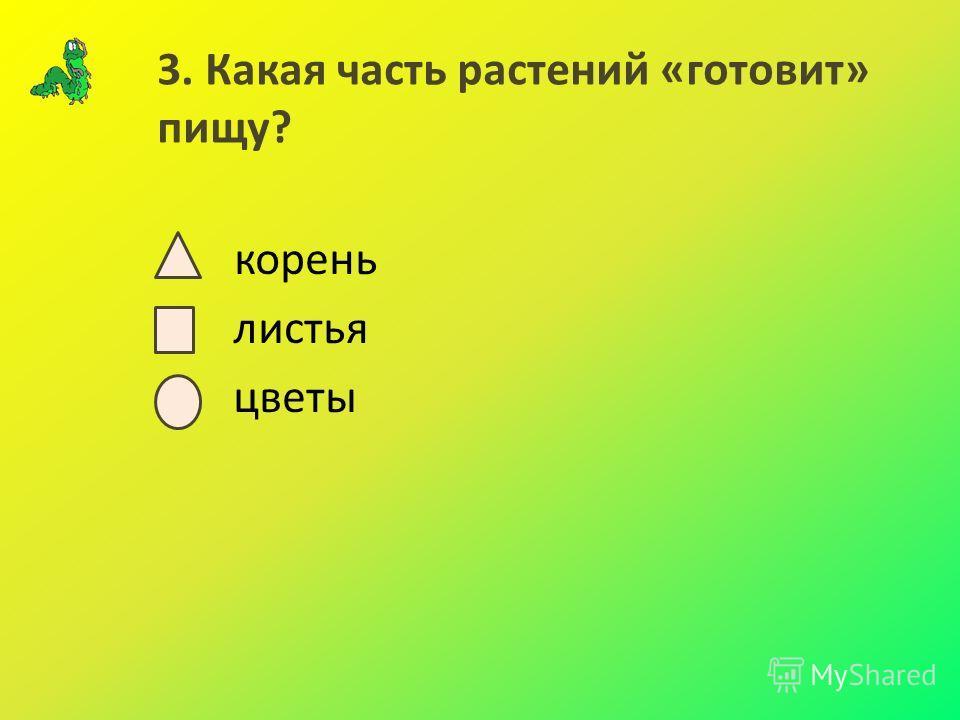 3. Какая часть растений «готовит» пищу? корень листья цветы