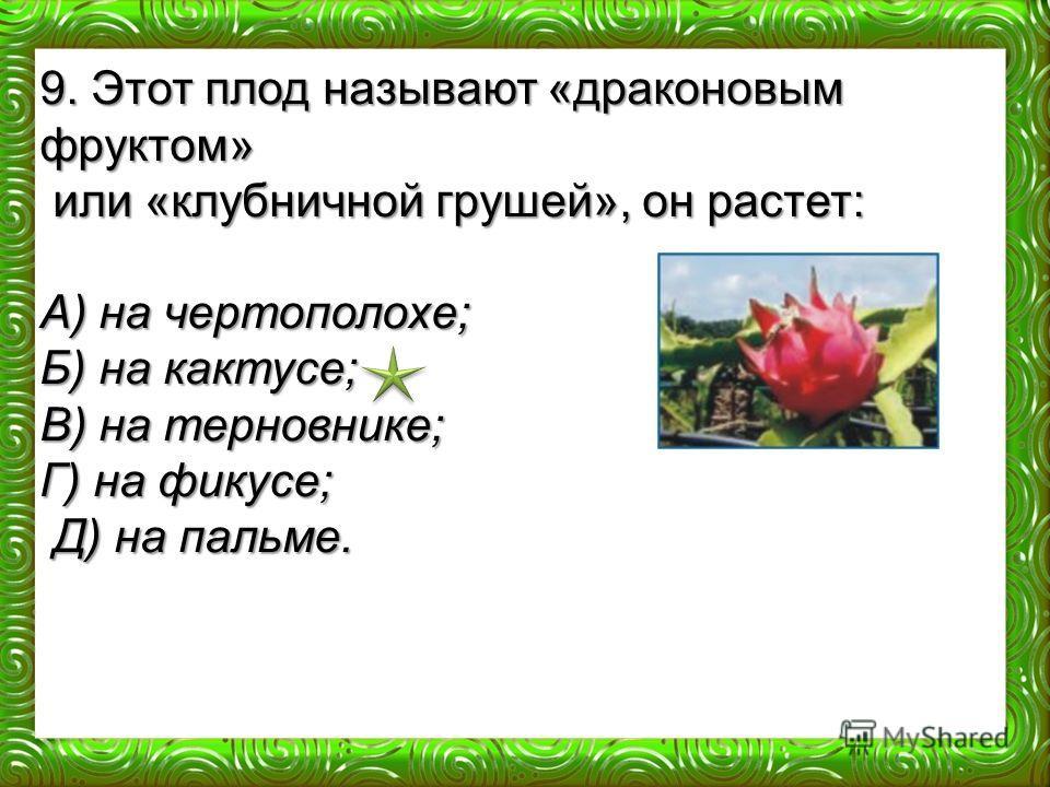 9. Этот плод называют «драконовым фруктом» или «клубничной грушей», он растет: или «клубничной грушей», он растет: А) на чертополохе; Б) на кактусе; В) на терновнике; Г) на фикусе; Д) на пальме. Д) на пальме.