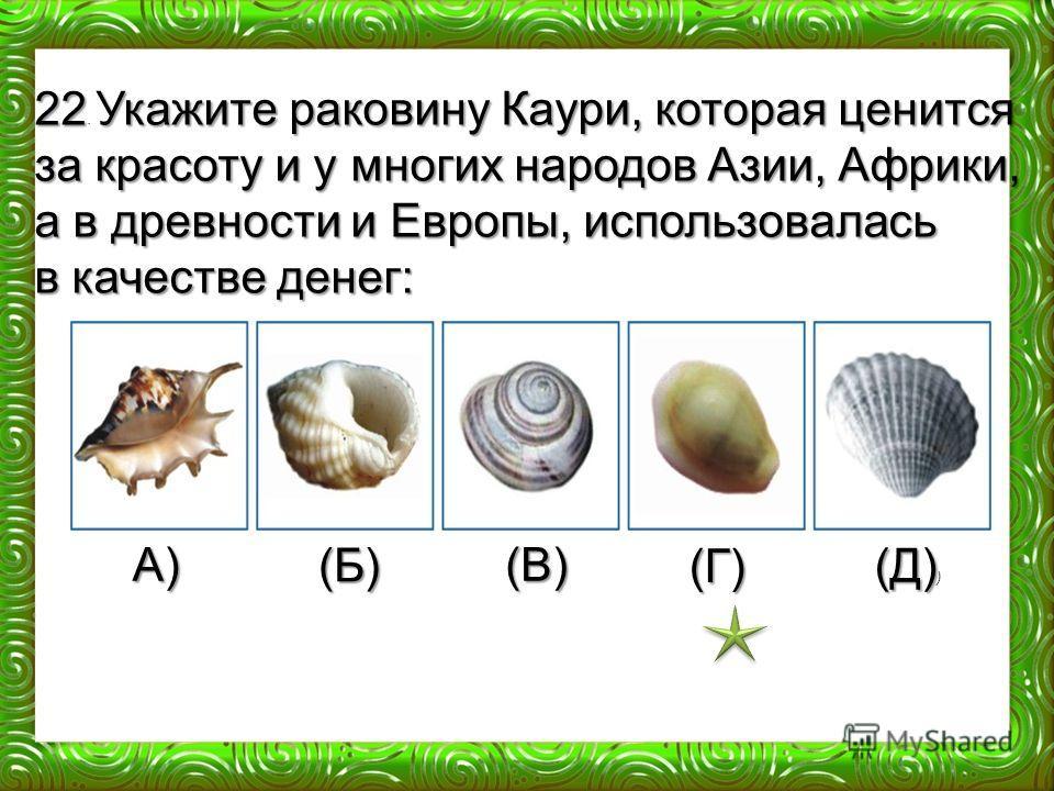 А) (Б) (В) (Г) (Д) (Д) ) 22Укажите раковину Каури, которая ценится 22. Укажите раковину Каури, которая ценится за красоту и у многих народов Азии, Африки, а в древности и Европы, использовалась в качестве денег: