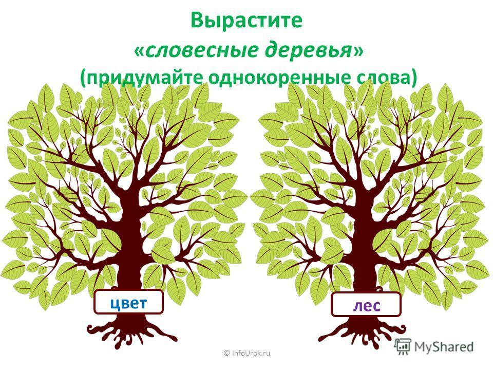 © InfoUrok.ru Вырастите « словесные деревья » (придумайте однокоренные слова) цвет лес