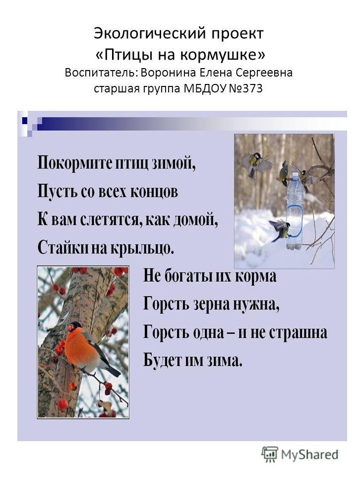 Экологический проект «Птицы на кормушке» Воспитатель: Воронина Елена Сергеевна старшая группа МБДОУ 373