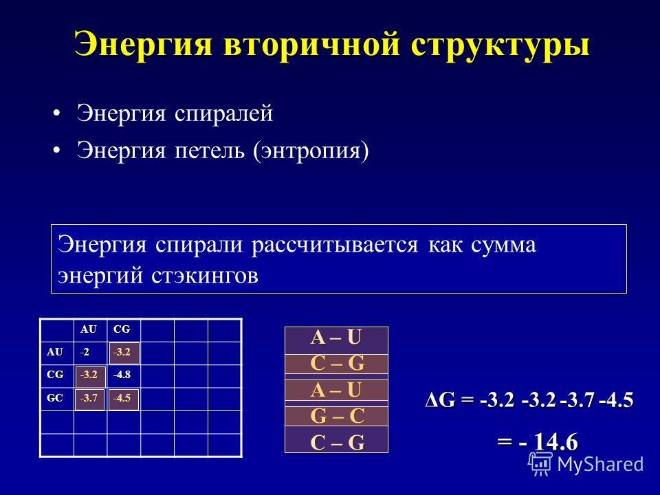 AUCG AU-2-3.2 CG-3.2-4.8 GC-3.7-4.5 Энергия вторичной структуры Энергия спиралей Энергия петель (энтропия) A – U C – G A – U G – C C – G ΔG = -3.2-3.2 -3.7-4.5 Энергия спирали рассчитывается как сумма энергий стэкингов = - 14.6
