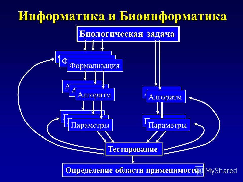 Информатика и Биоинформатика Биологическая задача Формализация Алгоритм Тестирование Параметры Определение области применимости