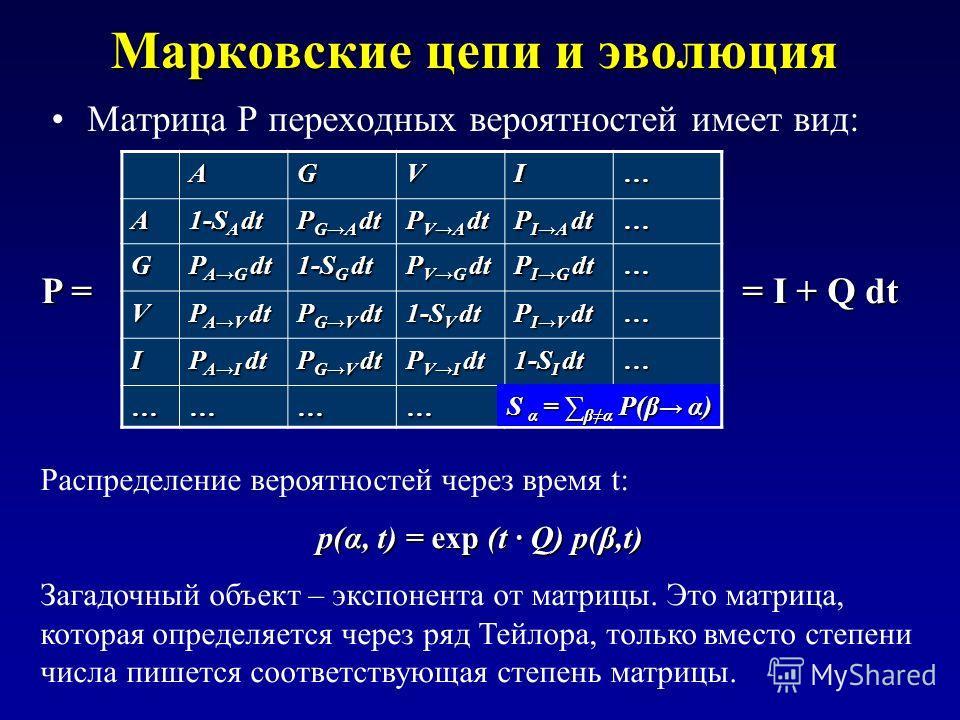 Марковские цепи и эволюция Матрица P переходных вероятностей имеет вид: AGVI… A 1-S A dt P GA dt P VA dt P IA dt … G P AG dt 1-S G dt P VG dt P IG dt … V P AV dt P GV dt 1-S V dt P IV dt … I P AI dt P GV dt P VI dt 1-S I dt … ……………… S α = βα P(β α) Р