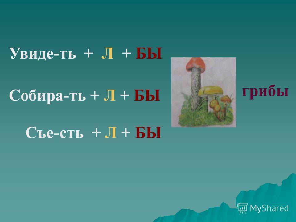 грибы Увиде-ть + Л + БЫ Съе-сть + Л + БЫ Собира-ть + Л + БЫ