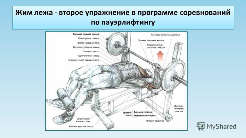 Жим лежа - второе упражнение в программе соревнований по пауэрлифтингу