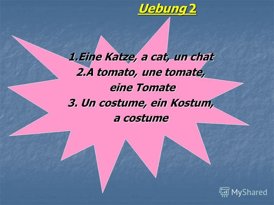 Uebung 2 1.Eine Katze, a cat, un chat 2.A tomato, une tomate, eine Tomate eine Tomate 3. Un costume, ein Kostum, a costume
