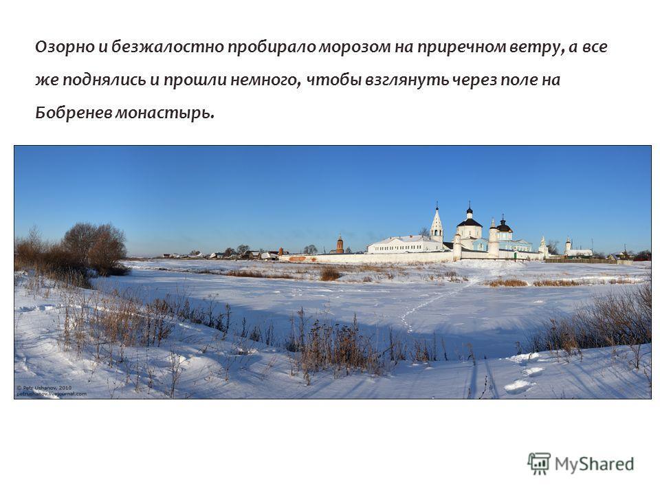 Озорно и безжалостно пробирало морозом на приречном ветру, а все же поднялись и прошли немного, чтобы взглянуть через поле на Бобренев монастырь.
