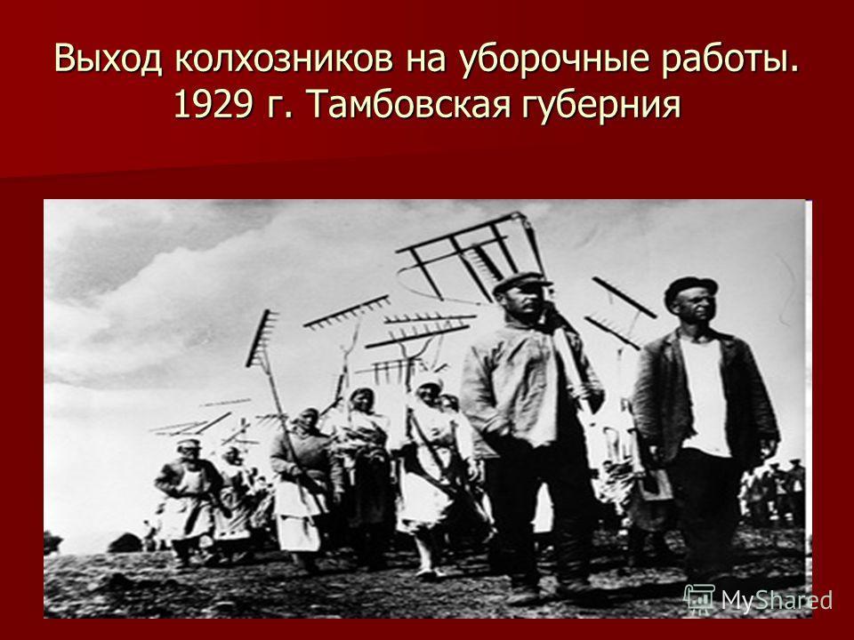 Выход колхозников на уборочные работы. 1929 г. Тамбовская губерния