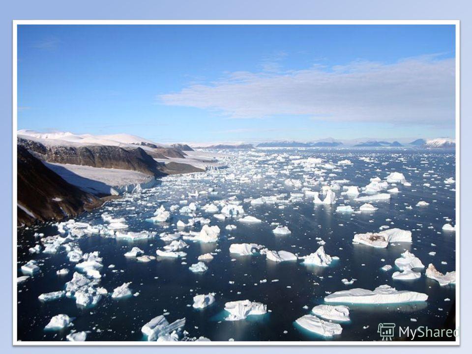 Американские берега холодного водоёма, как правило, низкие, ровные, имеют много лагун. Берега Евразии совсем другие. Они извилистые и высокие. Здесь существует множество узких, глубоко врезающихся в сушу заливов или фьордов. Подводная часть океана по