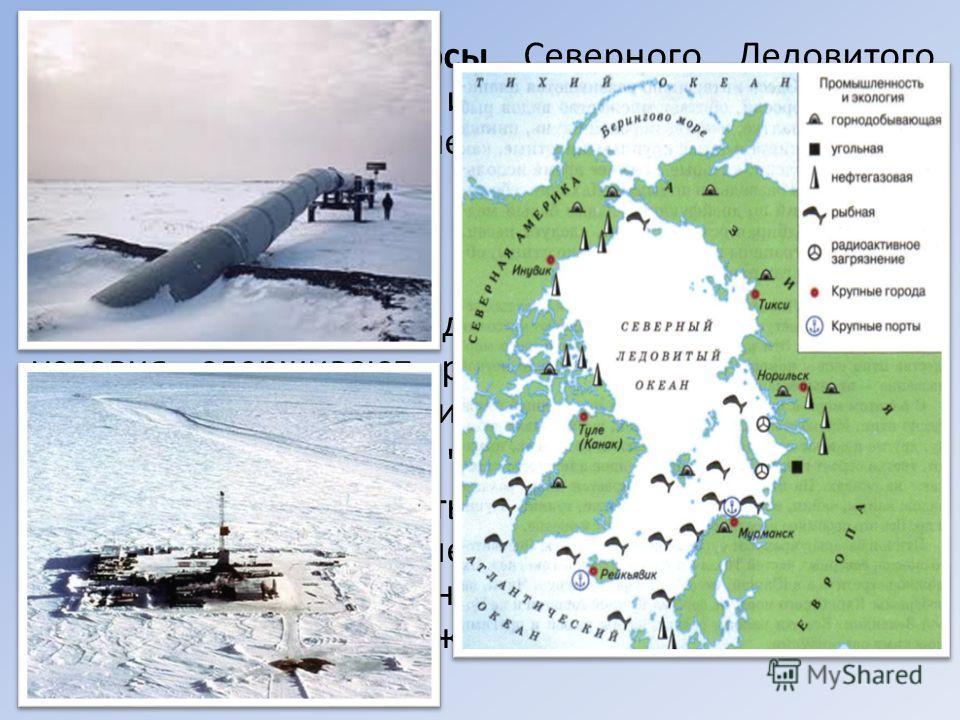 Минеральные ресурсы Северного Ледовитого океана пока еще слабо изучены. Однако на шельфе океана обнаружено более 50 месторождений нефти и газа; некоторые из них уже начинают разрабатываться. Открыты россыпные месторождения тяжелых металлов (олово и д