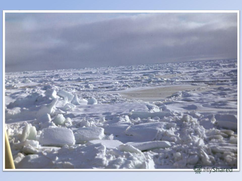 Океан расположен в центре Арктики, почти со всех сторон окружен сушей, что определяет особенности его природы климат, гидрологические условия, ледовую обстановку. Над его акваторией формируются и весь год господствуют арктические воздушные массы. Сре