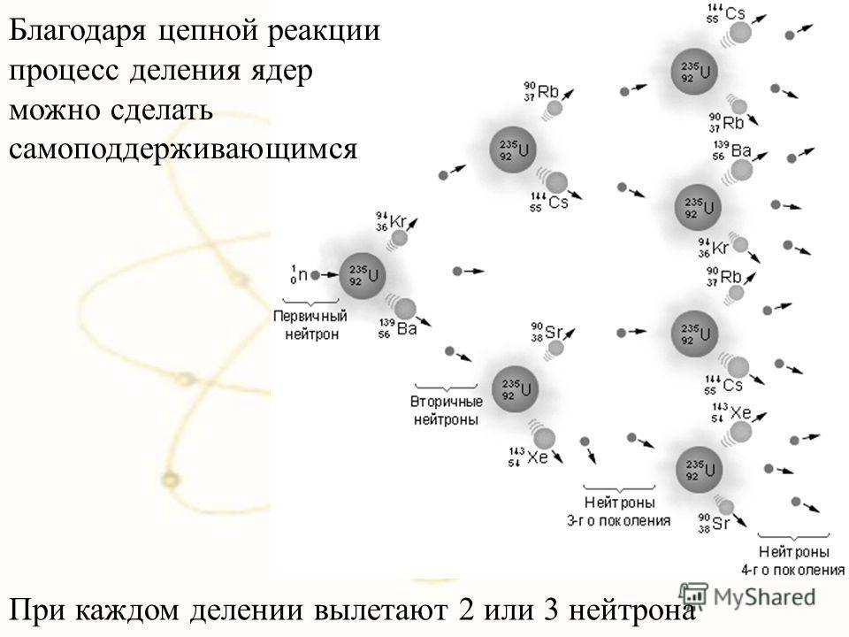 При каждом делении вылетают 2 или 3 нейтрона Благодаря цепной реакции процесс деления ядер можно сделать самоподдерживающимся