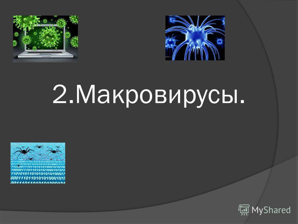 2.Макровирусы.