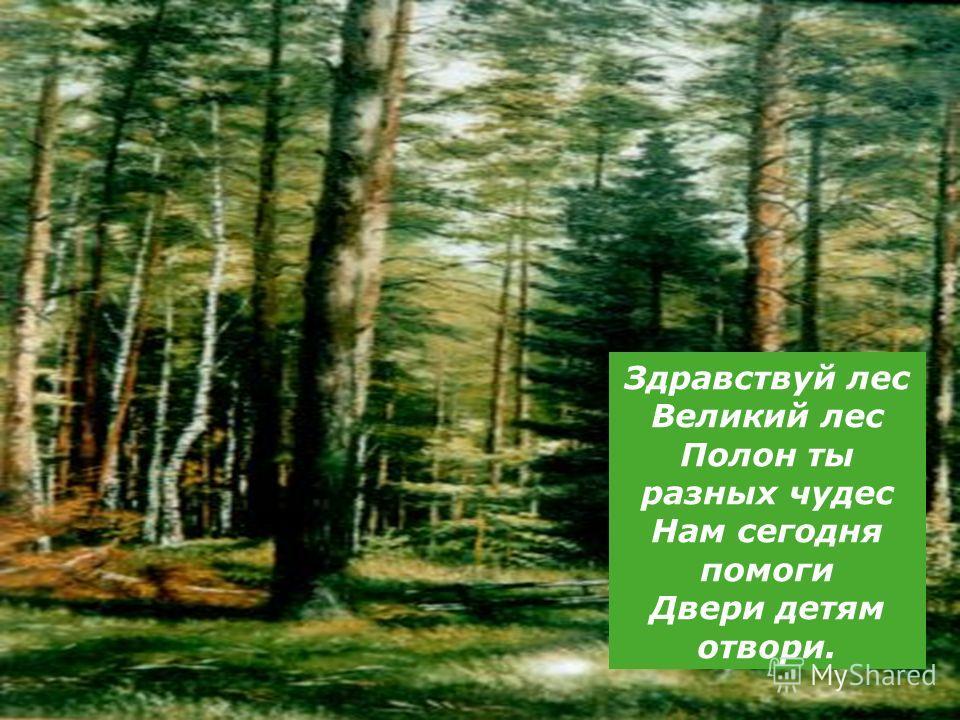 Здравствуй лес Великий лес Полон ты разных чудес Нам сегодня помоги Двери детям отвори.