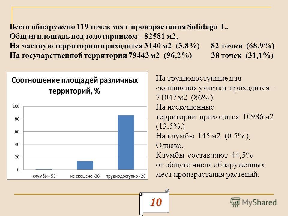 10 Всего обнаружено 119 точек мест произрастания Solidago L. Общая площадь под золотарником – 82581 м2, На частную территорию приходится 3140 м2 (3,8%) 82 точки (68,9%) На государственной территории 79443 м2 (96,2%) 38 точек (31,1%) На труднодоступны