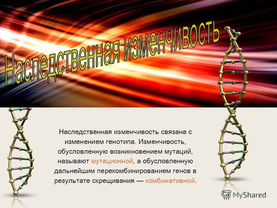 Наследственная изменчивость связана с изменением генотипа. Изменчивость, обусловленную возникновением мутаций, называют мутационной, а обусловленную дальнейшим перекомбинированием генов в результате скрещивания комбинативной.