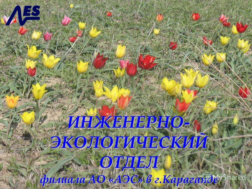 ИНЖЕНЕРНО- ЭКОЛОГИЧЕСКИЙ ОТДЕЛ филиала АО «АЭС» в г.Караганде