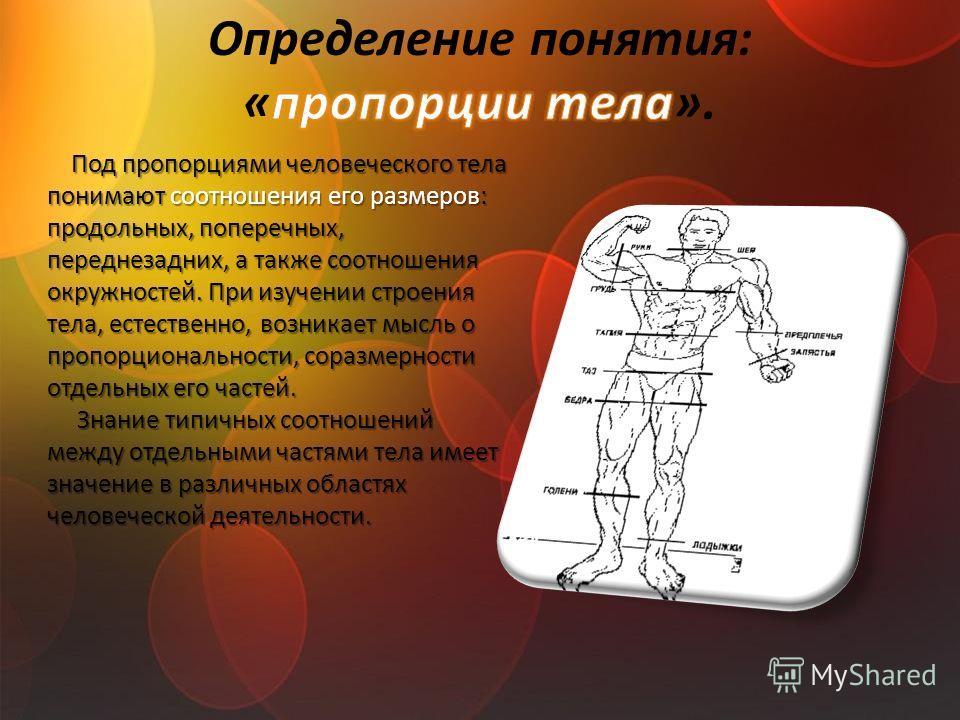 Под пропорциями человеческого тела понимают соотношения его размеров: продольных, поперечных, переднезадних, а также соотношения окружностей. При изучении строения тела, естественно, возникает мысль о пропорциональности, соразмерности отдельных его ч