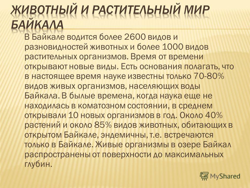 В Байкале водится более 2600 видов и разновидностей животных и более 1000 видов растительных организмов. Время от времени открывают новые виды. Есть основания полагать, что в настоящее время науке известны только 70-80% видов живых организмов, населя