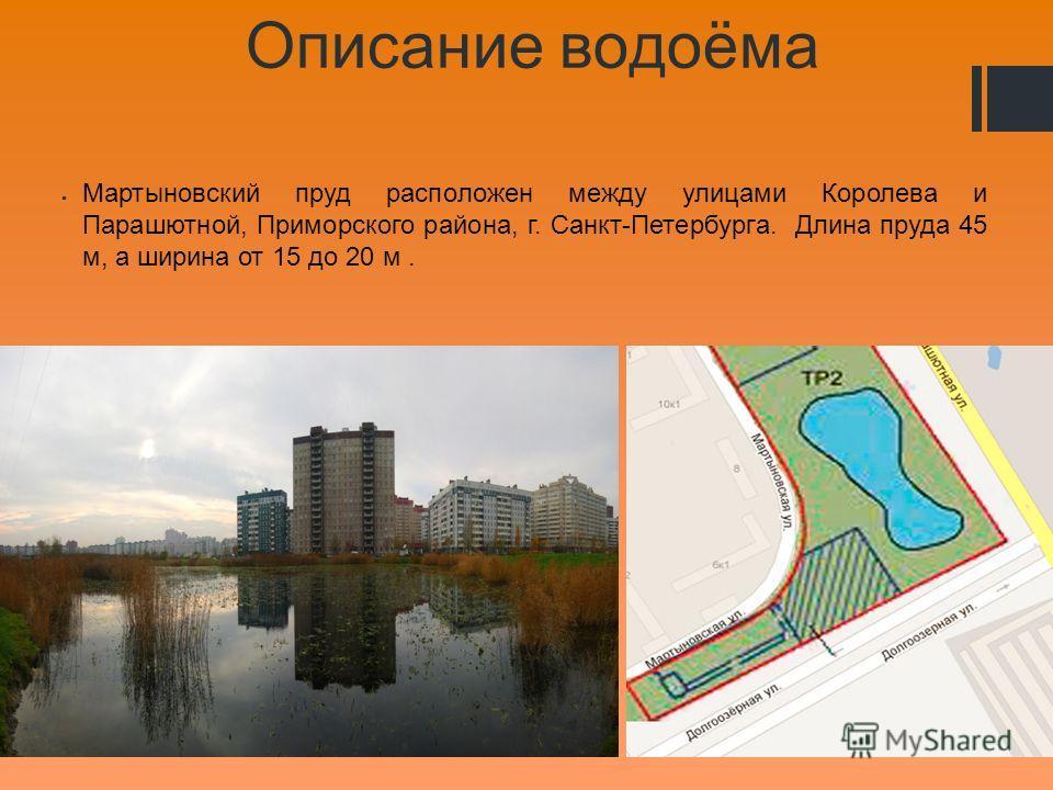 Описание водоёма Мартыновский пруд расположен между улицами Королева и Парашютной, Приморского района, г. Санкт-Петербурга. Длина пруда 45 м, а ширина от 15 до 20 м.