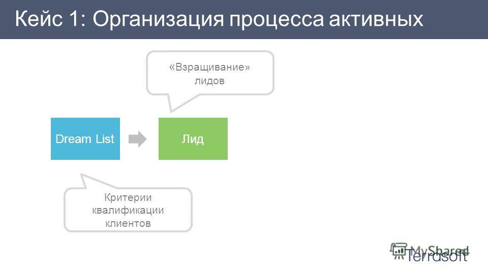Кейс 1: Организация процесса активных продаж « Взращивание» лидов Критерии квалификации клиентов Dream ListЛид