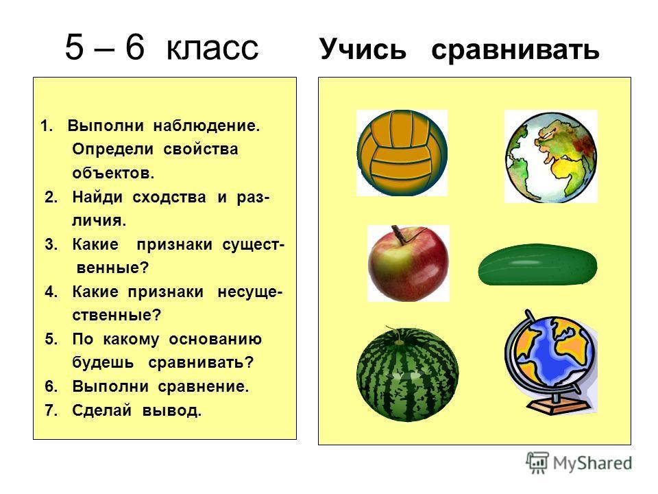 5 – 6 класс 1. Выполни наблюдение. Определи свойства объектов. 2. Найди сходства и раз- личия. 3. Какие признаки сущест- венные? 4. Какие признаки несуще- ственные? 5. По какому основанию будешь сравнивать? 6. Выполни сравнение. 7. Сделай вывод. Учис