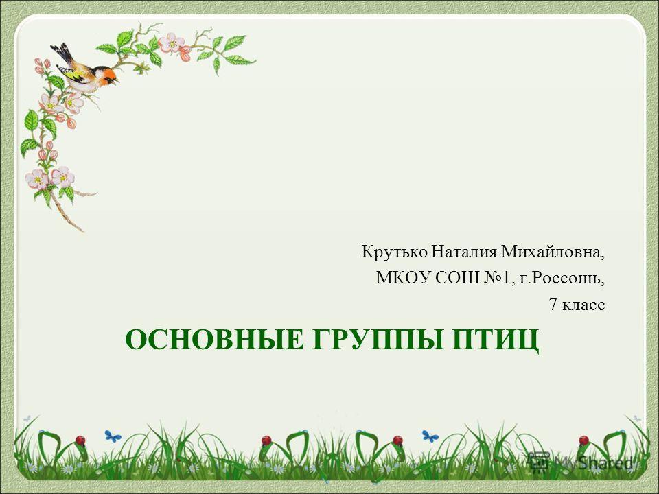 ОСНОВНЫЕ ГРУППЫ ПТИЦ Крутько Наталия Михайловна, МКОУ СОШ 1, г.Россошь, 7 класс