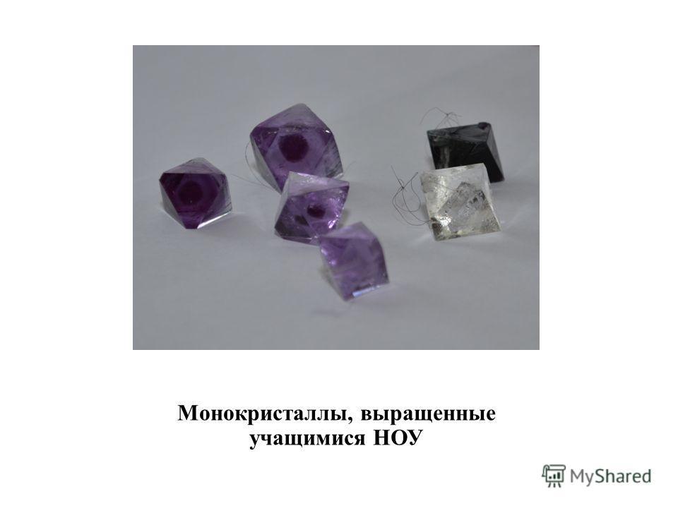 Монокристаллы, выращенные учащимися НОУ