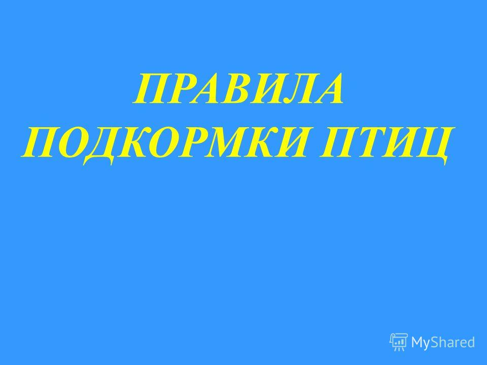 ПРАВИЛА ПОДКОРМКИ ПТИЦ