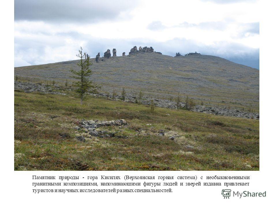 Памятник природы - гора Кисилях (Верхоянская горная система) с необыкновенными гранитными композициями, напоминающими фигуры людей и зверей издавна привлекает туристов и научных исследователей разных специальностей.