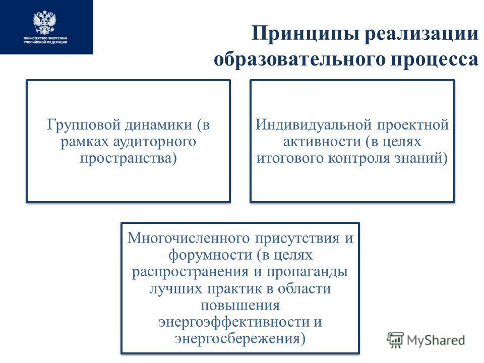 Принципы реализации образовательного процесса Групповой динамики (в рамках аудиторного пространства) Индивидуальной проектной активности (в целях итогового контроля знаний) Многочисленного присутствия и форумности (в целях распространения и пропаганд