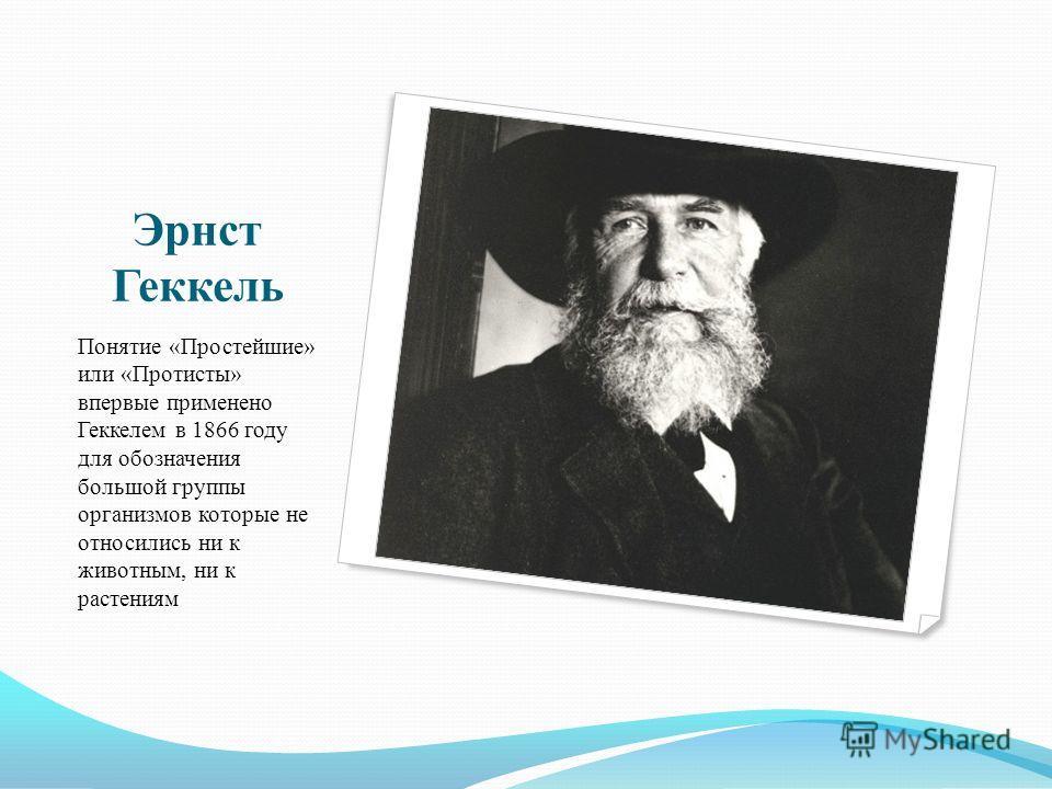 Эрнст Геккель Понятие «Простейшие» или «Протисты» впервые применено Геккелем в 1866 году для обозначения большой группы организмов которые не относились ни к животным, ни к растениям
