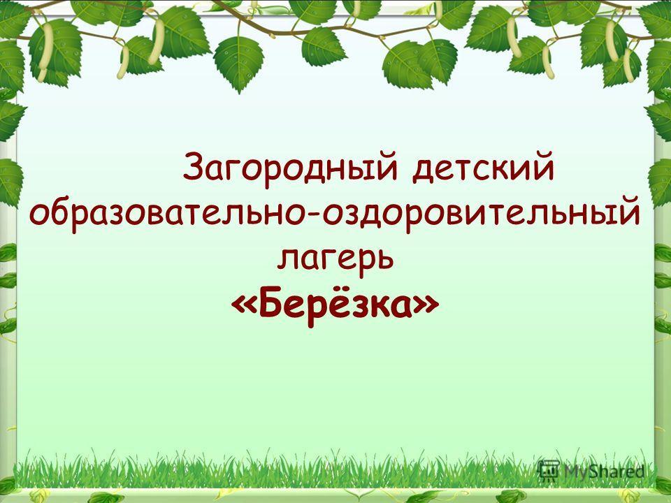 Загородный детский образовательно-оздоровительный лагерь «Берёзка»