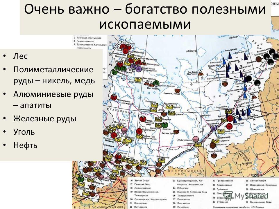 Очень важно – богатство полезными ископаемыми Лес Полиметаллические руды – никель, медь Алюминиевые руды – апатиты Железные руды Уголь Нефть