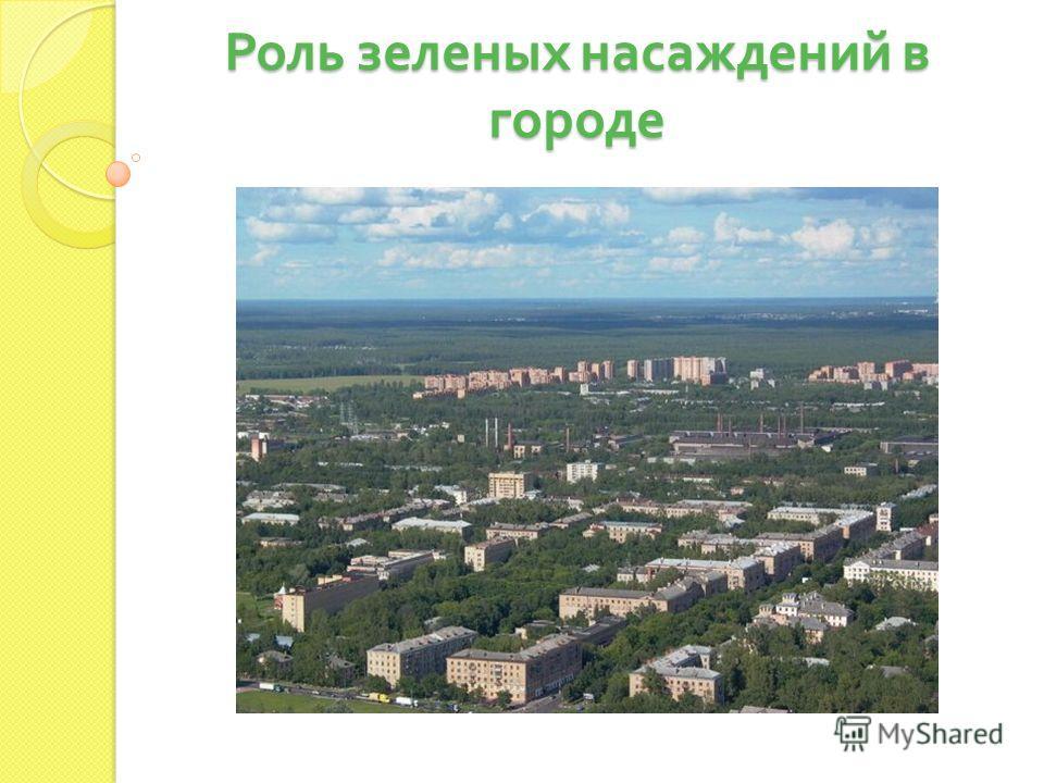 Роль зеленых насаждений в городе