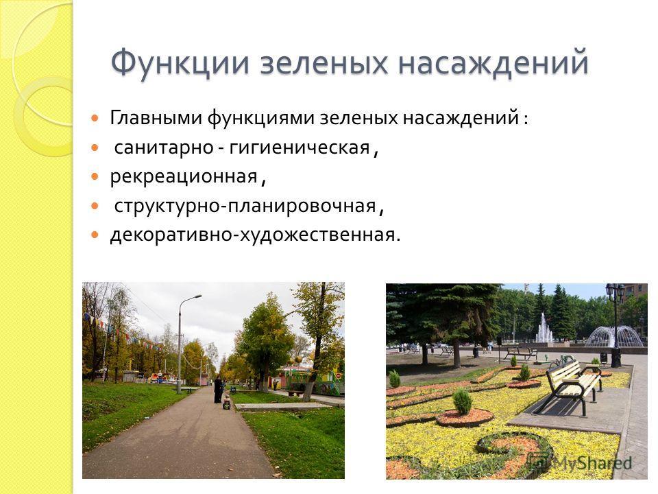 Функции зеленых насаждений Главными функциями зеленых насаждений : санитарно - гигиеническая, рекреационная, структурно - планировочная, декоративно - художественная.