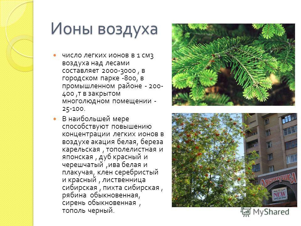 Ионы воздуха число легких ионов в 1 см 3 воздуха над лесами составляет 2000-3000, в городском парке -800, в промышленном районе - 200- 400, т в закрытом многолюдном помещении - 25-100. В наибольшей мере способствуют повышению концентрации легких ионо