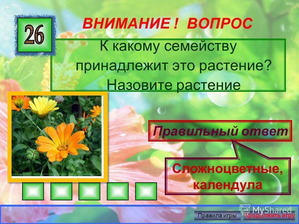 ВНИМАНИЕ ! ВОПРОС Как называется стебель этих растений? К какому семейству они принадлежат? Правильный ответ Соломина, злаки Правила игрыПродолжить игру