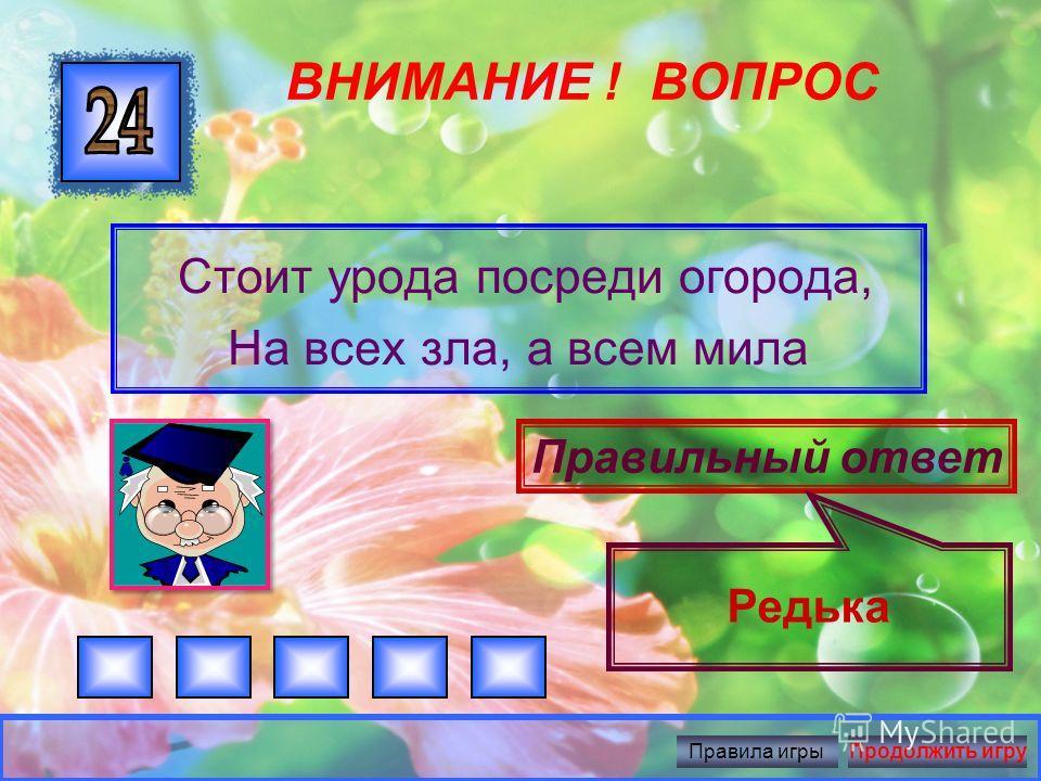 ВНИМАНИЕ ! ВОПРОС Синий мундир, желтая подкладка, В середине сладко Правильный ответ Слива Правила игрыПродолжить игру