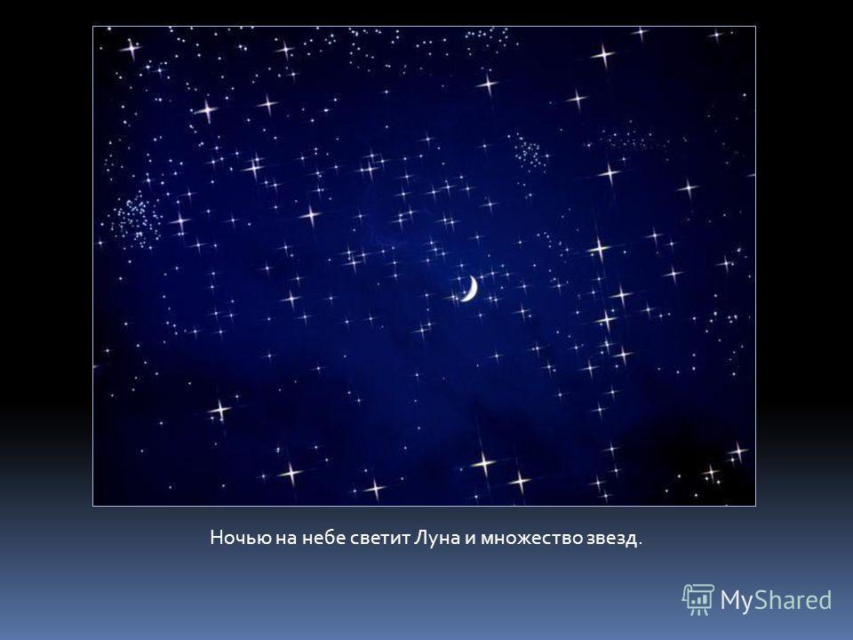 Ночью на небе светит Луна и множество звезд.