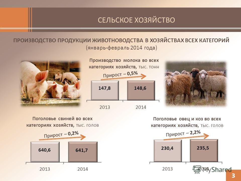 СЕЛЬСКОЕ ХОЗЯЙСТВО ПРОИЗВОДСТВО ПРОДУКЦИИ ЖИВОТНОВОДСТВА В ХОЗЯЙСТВАХ ВСЕХ КАТЕГОРИЙ (январь-февраль 2014 года) 3 Поголовье овец и коз во всех категориях хозяйств, тыс. голов Поголовье свиней во всех категориях хозяйств, тыс. голов Производство молок