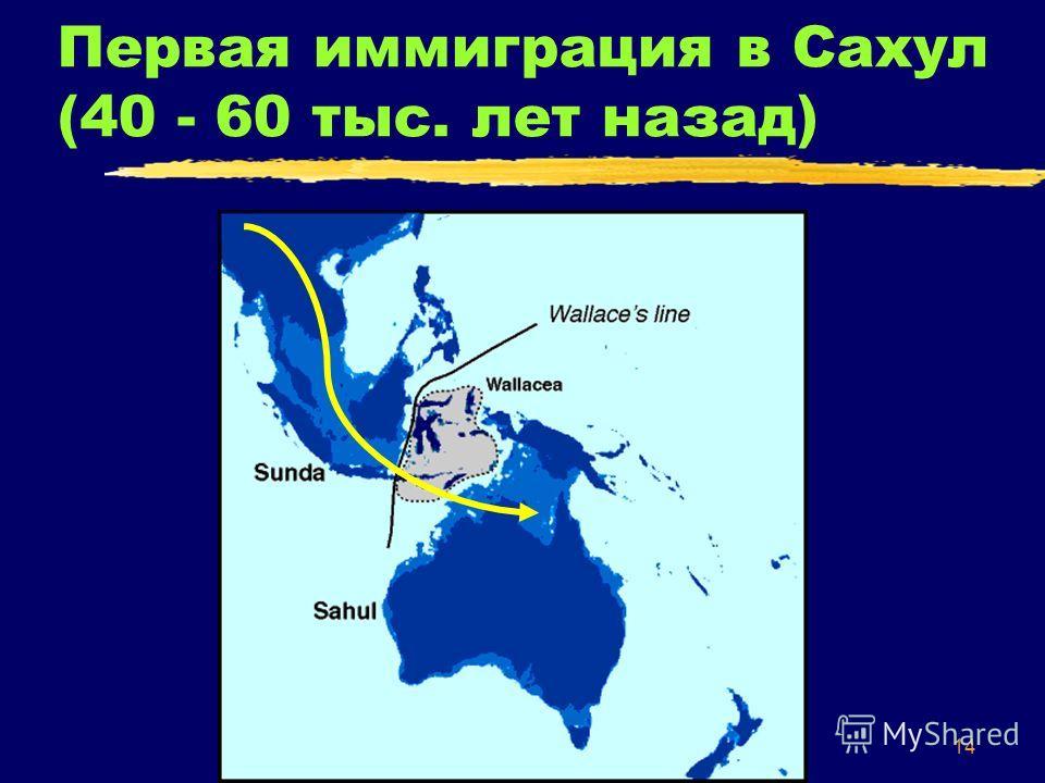 14 Первая иммиграция в Сахул (40 - 60 тыс. лет назад)