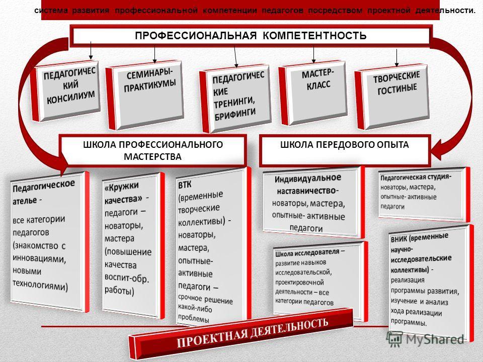 система развития профессиональной компетенции педагогов посредством проектной деятельности. ПРОФЕССИОНАЛЬНАЯ КОМПЕТЕНТНОСТЬ ШКОЛА ПРОФЕССИОНАЛЬНОГО МАСТЕРСТВА ШКОЛА ПЕРЕДОВОГО ОПЫТА