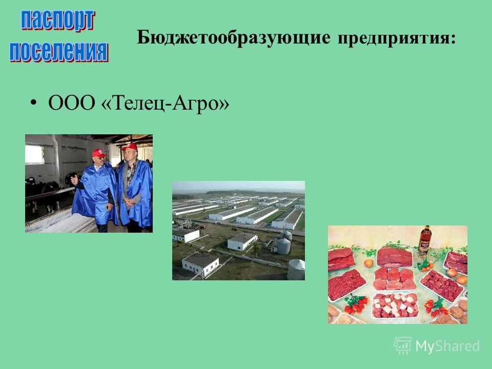 Бюджетообразующие предприятия: ООО «Телец-Агро»