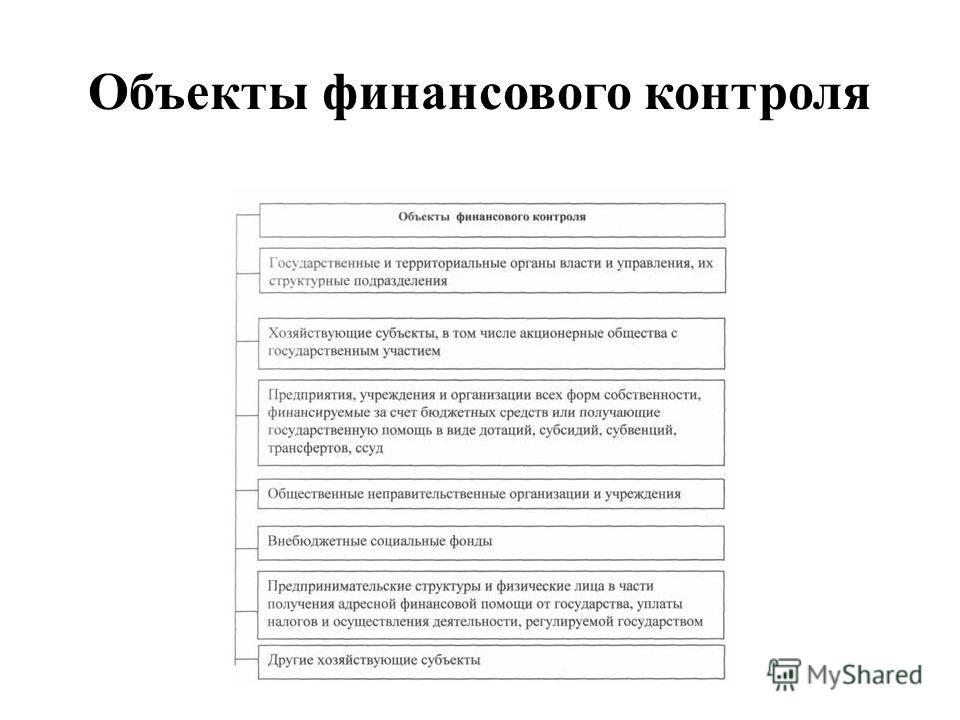 Объекты финансового контроля