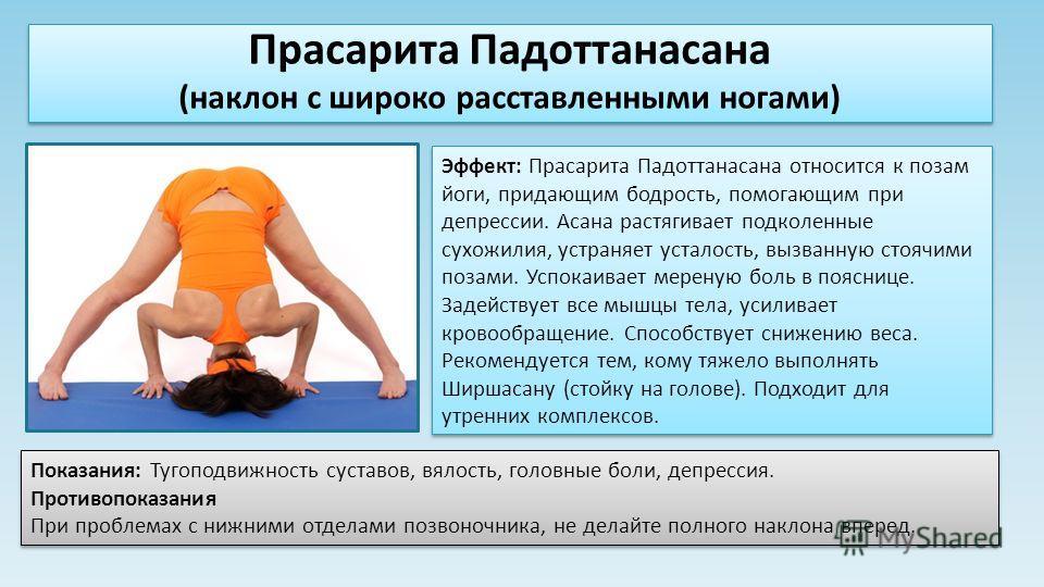 Эффект: Прасарита Падоттанасана относится к позам йоги, придающим бодрость, помогающим при депрессии. Асана растягивает подколенные сухожилия, устраняет усталость, вызванную стоячими позами. Успокаивает мереную боль в пояснице. Задействует все мышцы