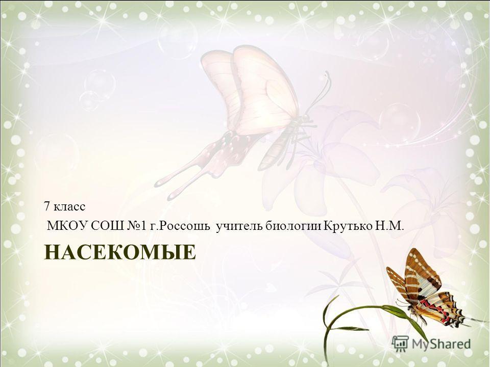 НАСЕКОМЫЕ 7 класс МКОУ СОШ 1 г.Россошь учитель биологии Крутько Н.М.